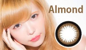 Bambi(バンビ)ワンデーシリーズ/Almondアーモンド(茶コン/1日交換使い捨て)/10枚入り/30枚入り