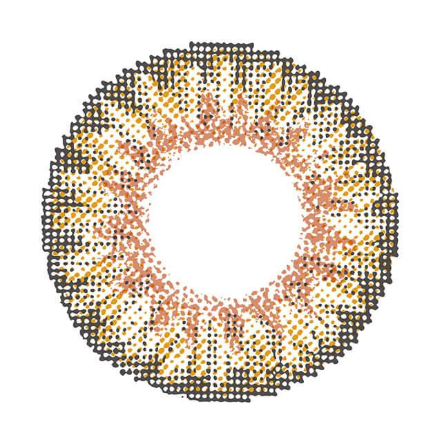 シュガーフィール エラドブラウンの装着画像・レンズ画像・パッケージ箱画像レポ