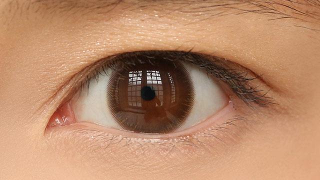 ディオーブワンデー ブラウンの装着画像・レンズ画像・パッケージ箱画像レポ